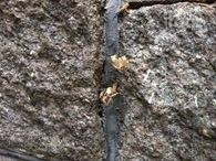 Rock iPhone 4