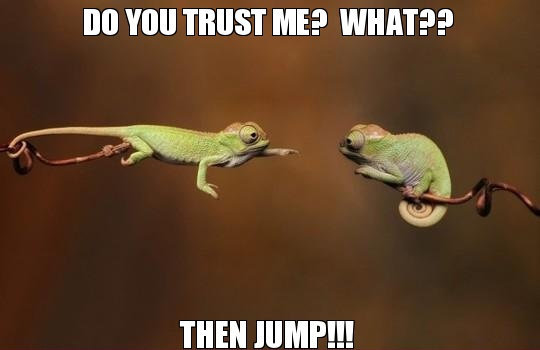 do-you-trust-me-what-then-jump