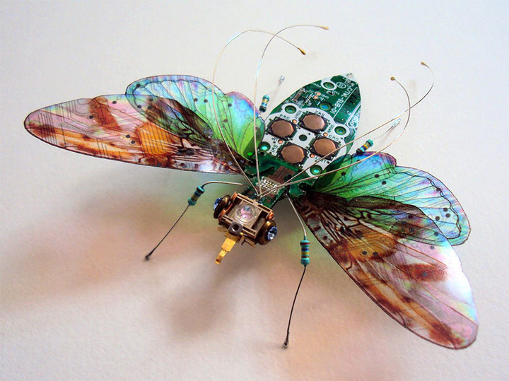 circuit-board-winged-insects-dew-leaf-julie-alice-chappell-2