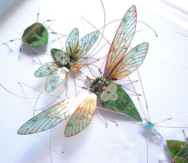 circuit-board-winged-insects-dew-leaf-julie-alice-chappell-20
