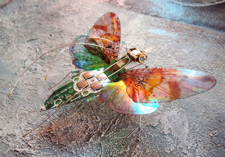 circuit-board-winged-insects-dew-leaf-julie-alice-chappell-3