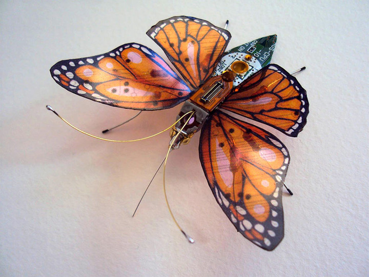 circuit-board-winged-insects-dew-leaf-julie-alice-chappell-4
