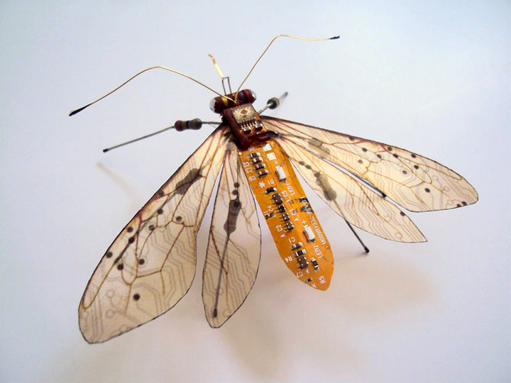 circuit-board-winged-insects-dew-leaf-julie-alice-chappell-5