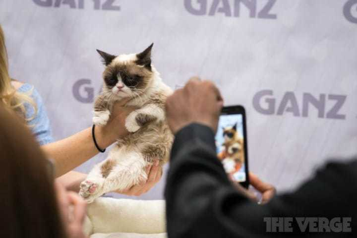 grumpy-cat-TF2014-stock3_2040