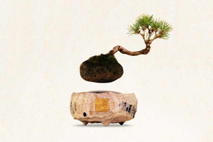 air-bonsai-floating-tree-01-960x640