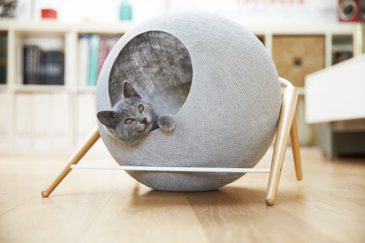 the-ball-is-an-organic-balance-between-wood-and-metal-meyou-writes-on-its-website-a-cocoon-that-your-cat-will-not-resist