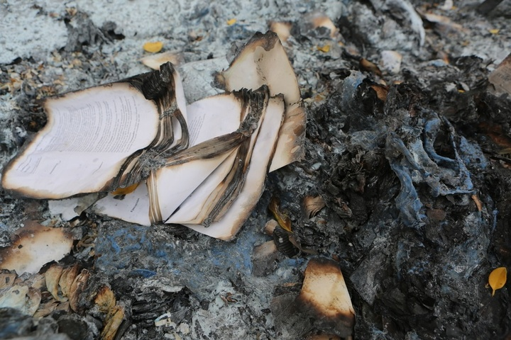book-book-pages-burned-pages-large