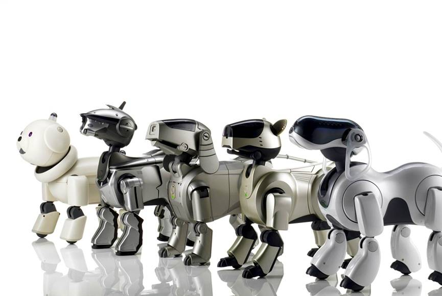 sony-aibos-robophil-robot-review