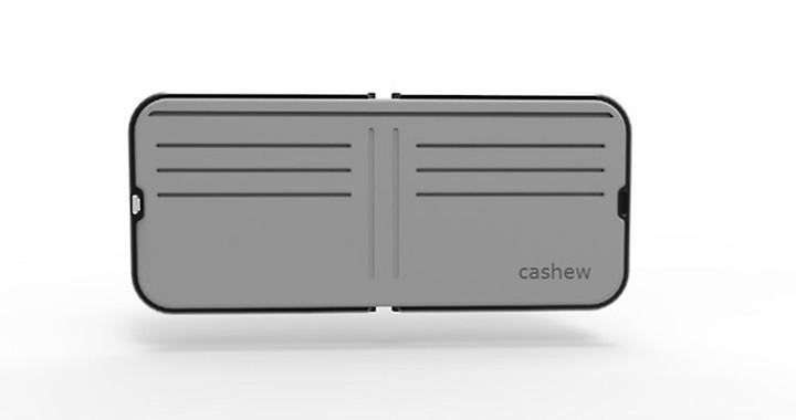 cashew-insider