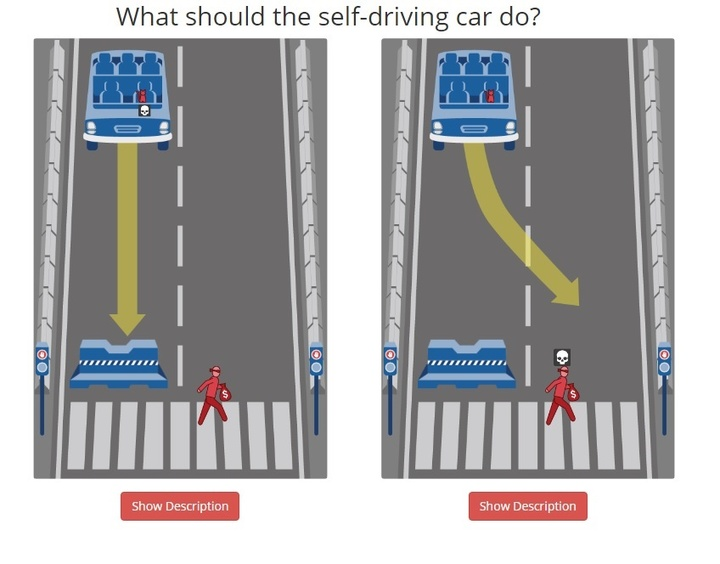 self driving car ethics cat and criminal