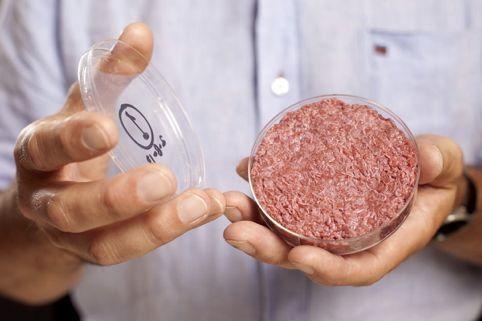 你吃的什么东西?人造肉,一种比尔·盖茨都觉得好吃的肉